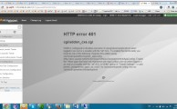 HTTP error 401:cgi/addon_cxs.cgi