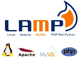 How to install Linux, Apache, MySQL, PHP on CentOS 6.x