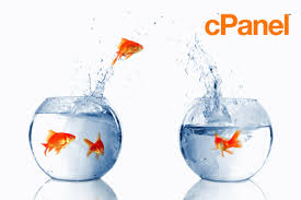 How to Speed Up cPanel to cPanel Migration