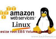 How to Resize root EBS Volume on AWS Linux Instance